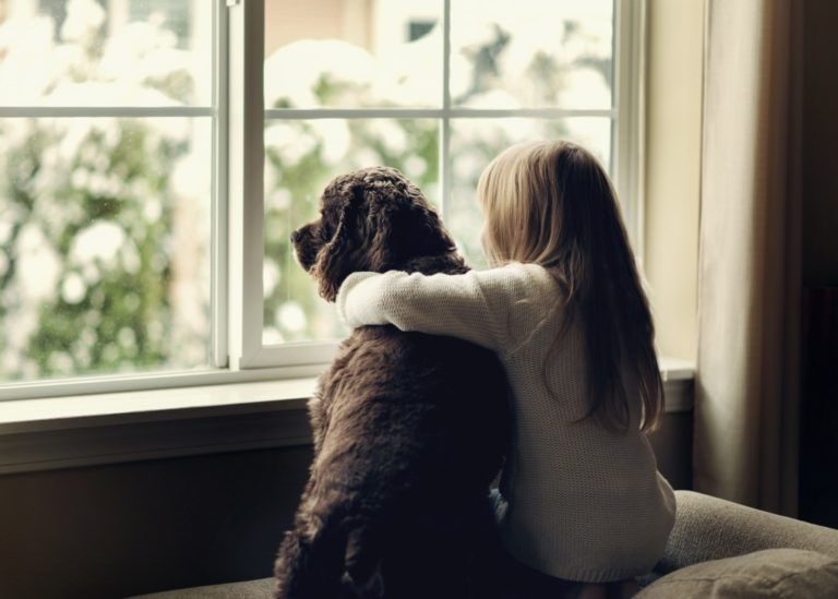 Child and dog by the window